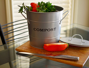 2 in 1 Compost Bucket