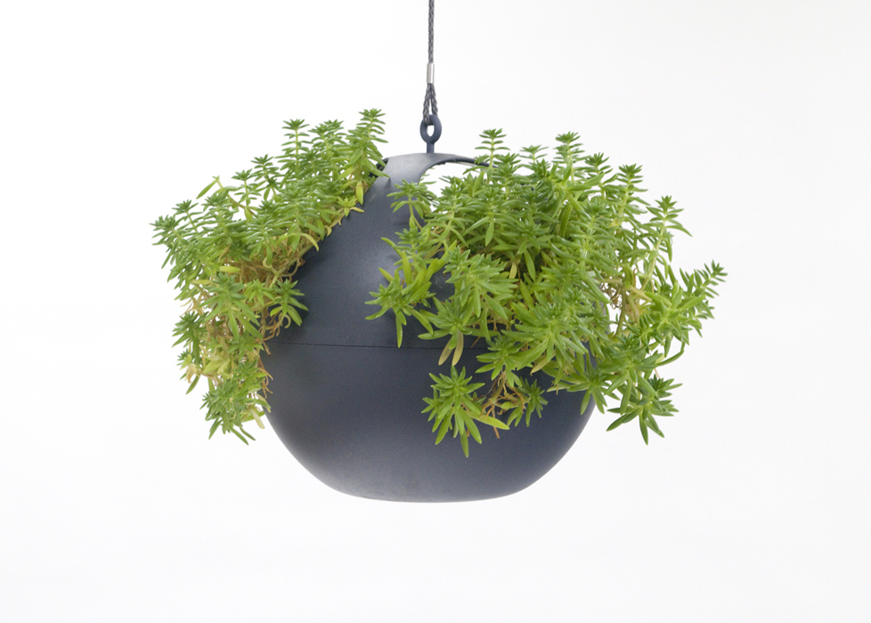 great for all types of plants