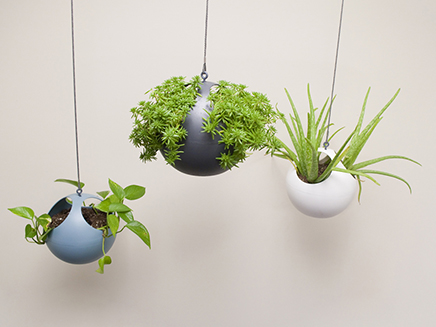 euro hanging planters group