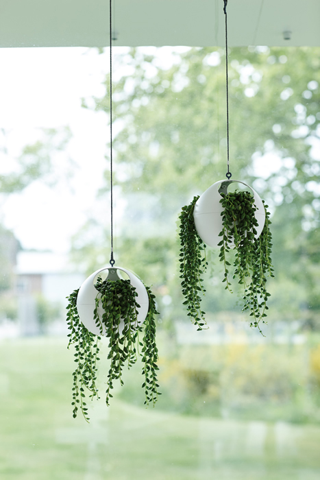 Euro Hanging Planters Come in Sets of Two