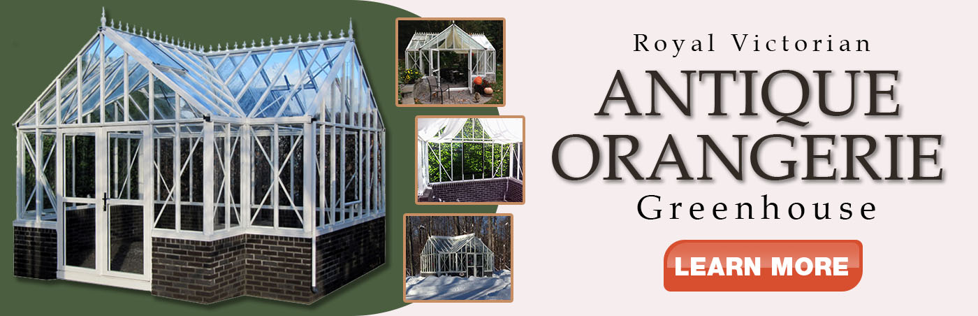 Antique Orangerie Greenhouse