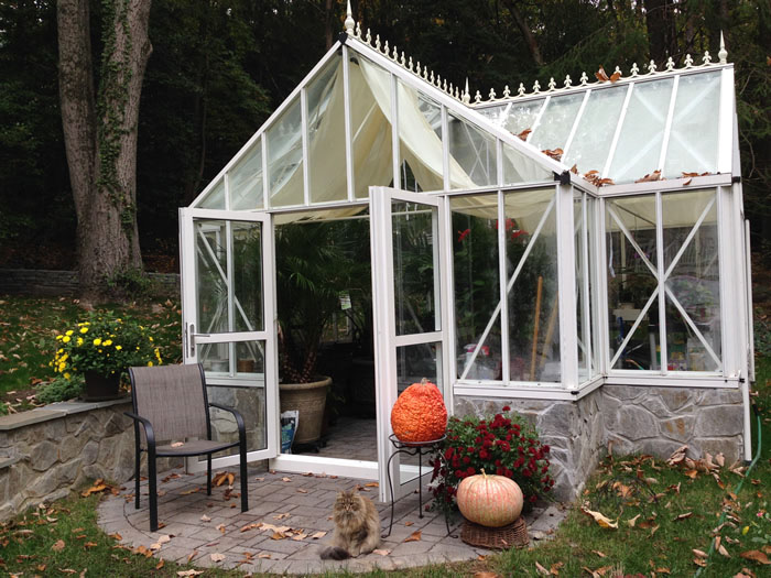 Evelyn antique orangerie greenhouse 3