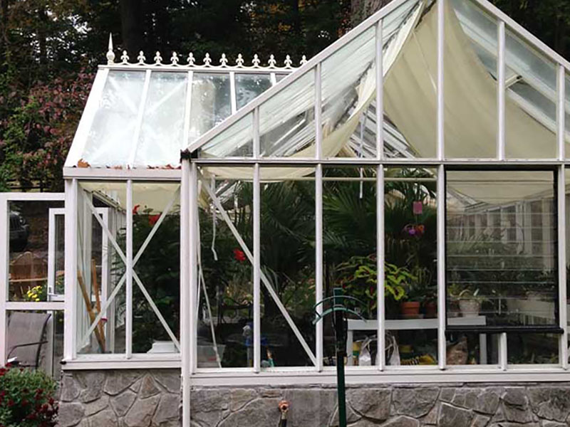 Evelyn antique orangerie greenhouse 6