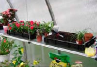 Heavy Duty Seed Trays