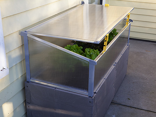 gray timber raised bed against house propped open