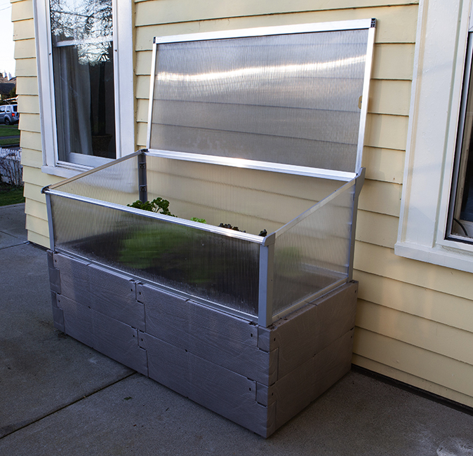 gray timber raised bed with cold frame against house fully open