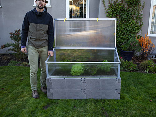 gray timber raised bed with cold frame and human for scale