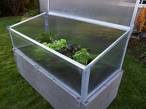 gray timber raised bed with cold frame top panel open